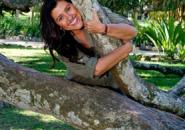 Um grande abraço nas árvores